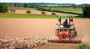 Branża rolnicza szuka alternatywy dla Ukraińców. I coraz chętniej spogląda na rynek azjatycki