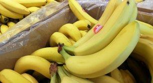 Banany podrożeją nawet o 50%. Plantatorzy ponoszą coraz większe koszty utrzymania produkcji