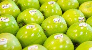 Analiza rynku detalicznego: Polskie sklepy zdecydowanie wolą promować jabłka niż banany