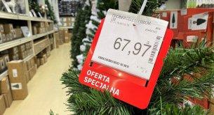Badanie: W tym roku Polacy wydadzą na zakup choinki średnio od 100 do 200 złotych