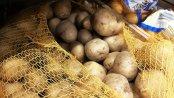 Ceny ziemniaków: W sklepach promocje są dużo mniejsze niż rok temu. Średnio jest drożej o ponad 26%