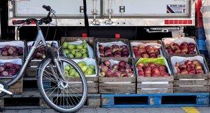 Analiza cen owoców: Pandemia mocno zachwiała rynkiem. Wzrosty są na poziomie nawet 130%