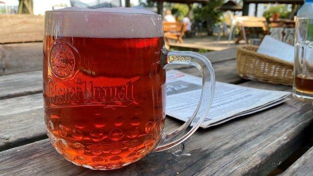 ANALIZA: Sezon letni z droższym piwem. Polacy zapłacą średnio o 14 groszy więcej niż rok temu