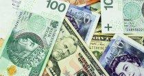 Biuro Rzecznika Finansowego: Polacy rekordowo skarżą się na banki w kwestii kredytów walutowych